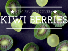 NEW FRUIT DISCOVERY- NERGI KIWI BERRIES