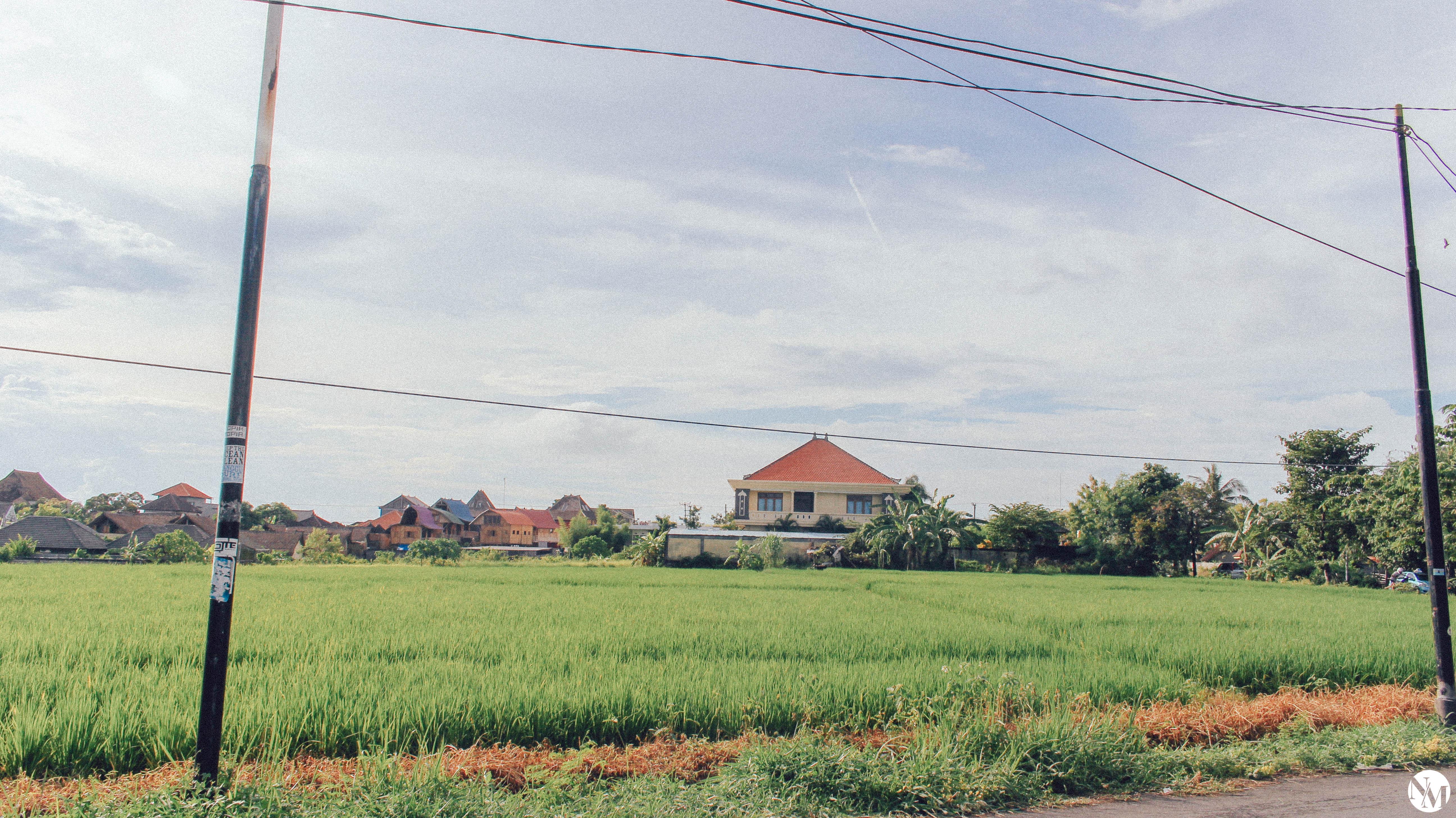 Canggu Bali Travel Guide by Noni May-30