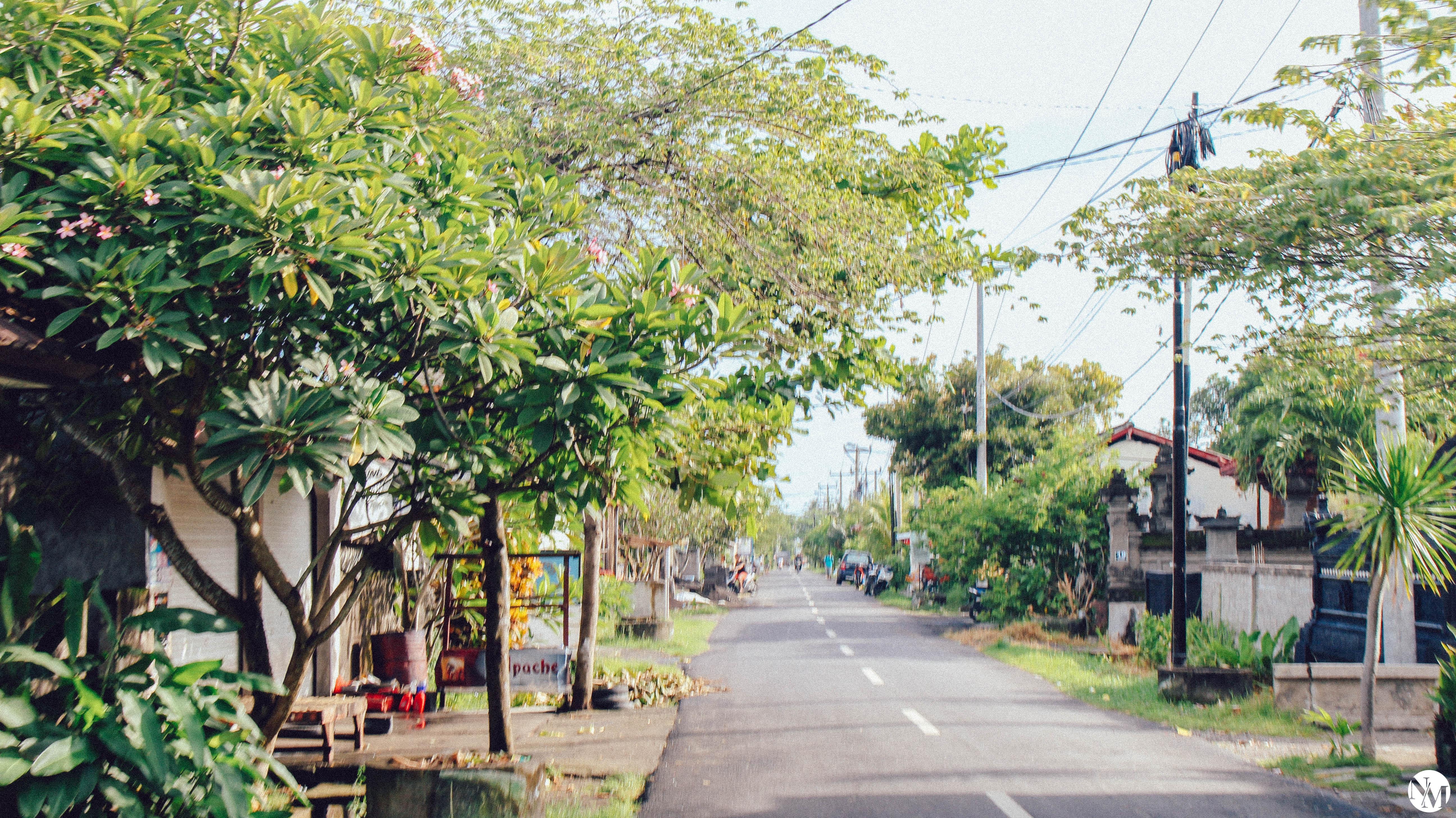 Canggu Bali Travel Guide by Noni May-32