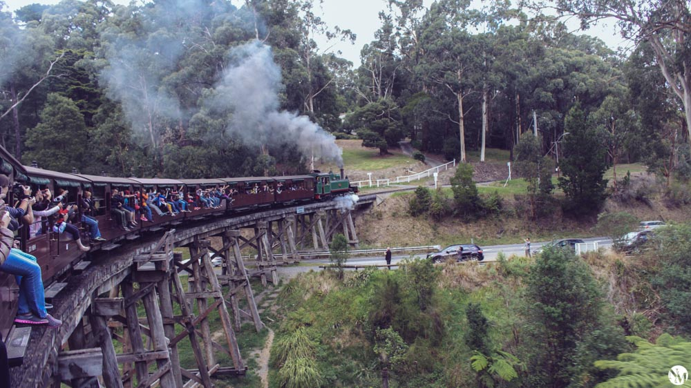 Melbourne Dandenong Ranges and Puffing Billy by Noni May www.amsterdamcurated.nl-15