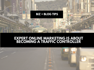 Expert online marketing is about becoming a traffic controller