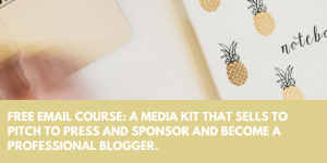 free email course a media kit that sells