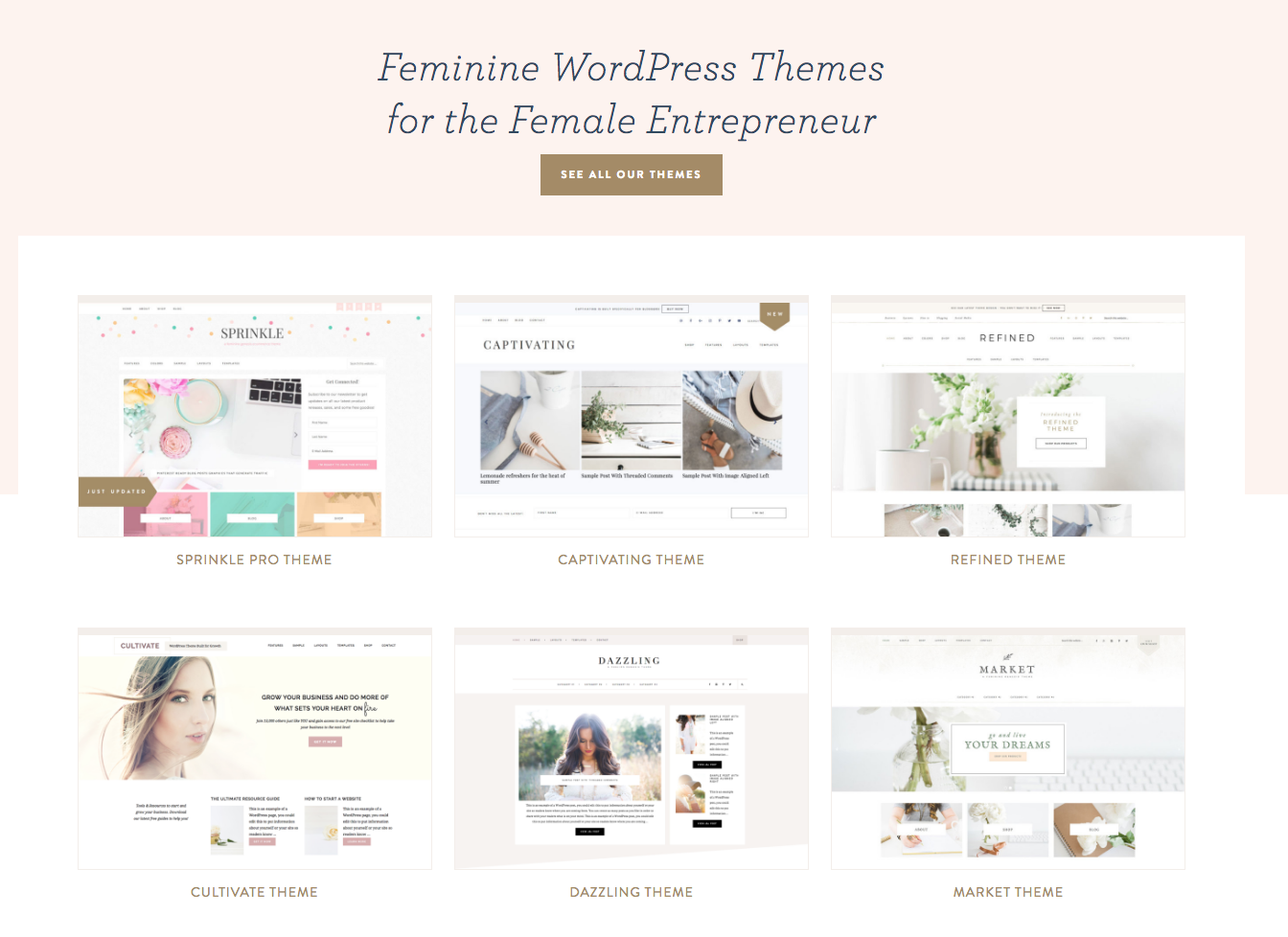 Feminine blog designs and feminine blog themes for entrepreneurs black friday and cyber monday sale