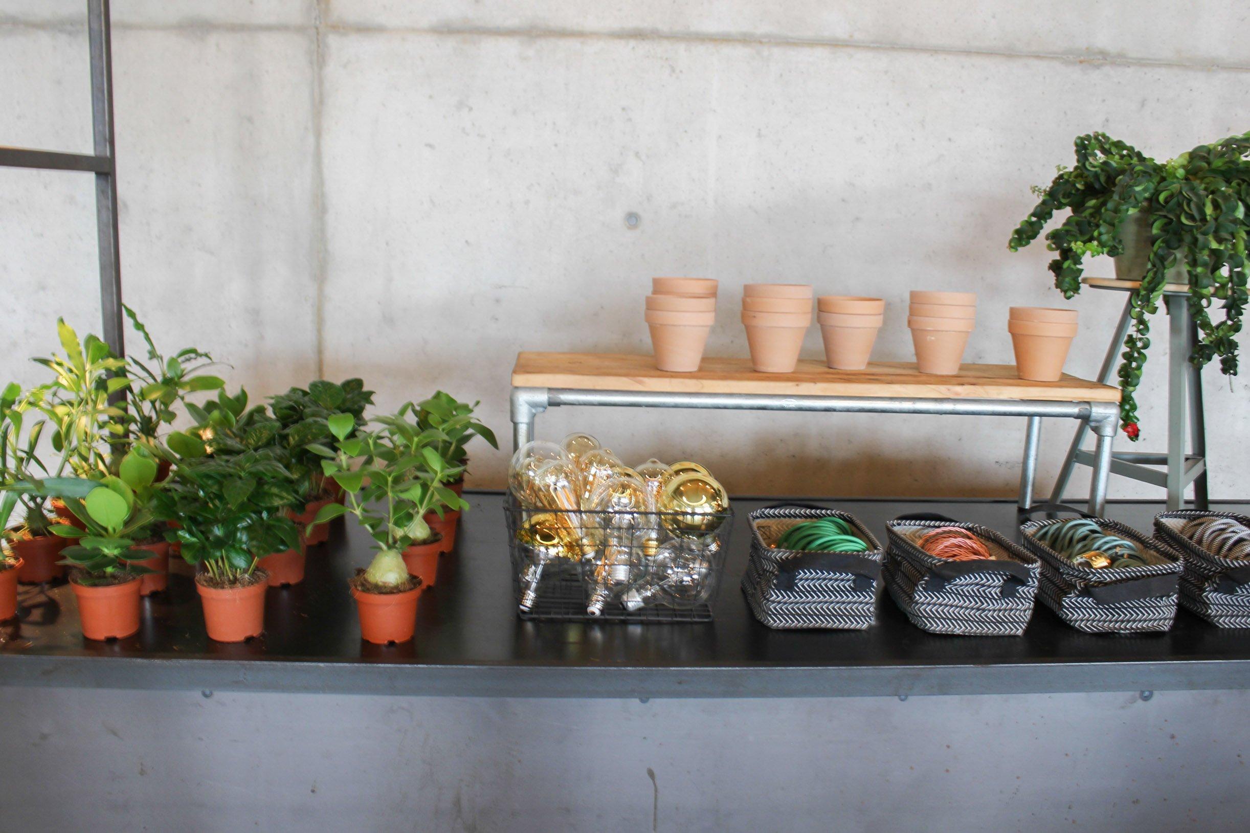 Bosch DIY blog noni may
